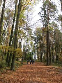 Hiking, Sennhof - 2017