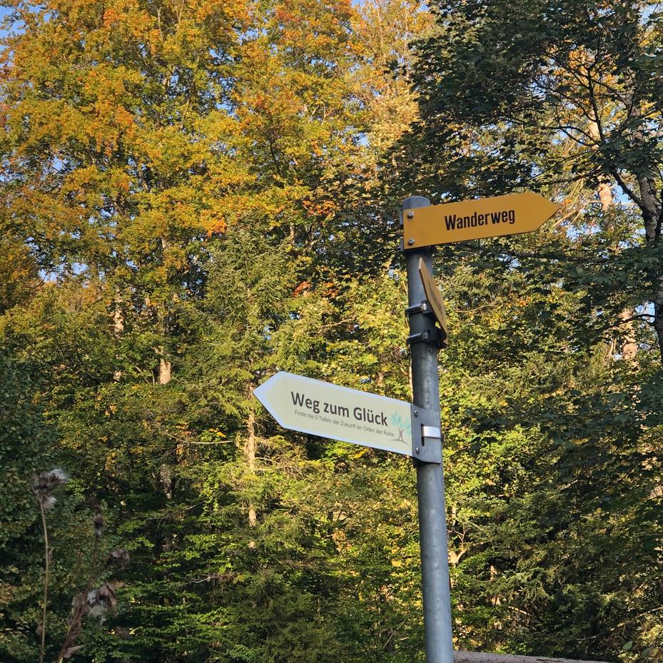 October 2020, on the Hörnli by Lisa Sennhauser-Kelly