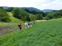 Hiking, Eglisau - 2007