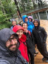 Tree Top Walk - 2019