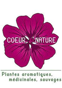 logo mauve plante medicinale bio.jpeg