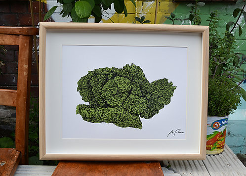 Cabbage Kitchen Print