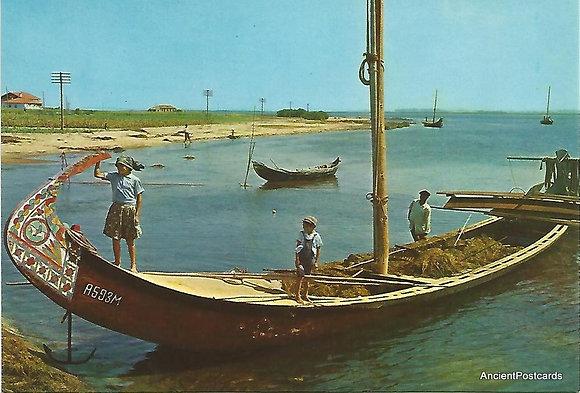 Portugal PTAV1908 Aveiro