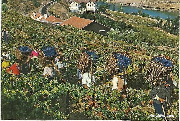 Portugal PTPT1876 Porto