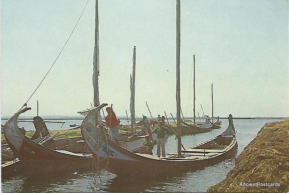 Portugal PTAV1894 Aveiro Ovar