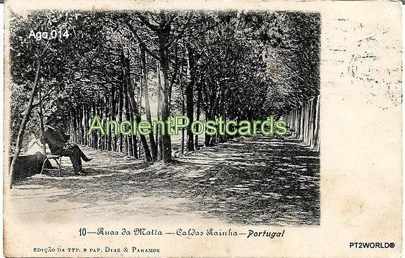 Portugal Ago PTLE0141910 Leiria Caldas da Rainha 1910