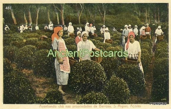 Portugal PTAC487 Açores