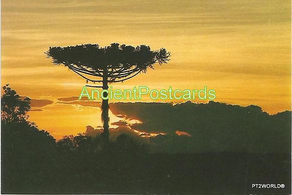 Brasil Postcards BRP1729 Paraná
