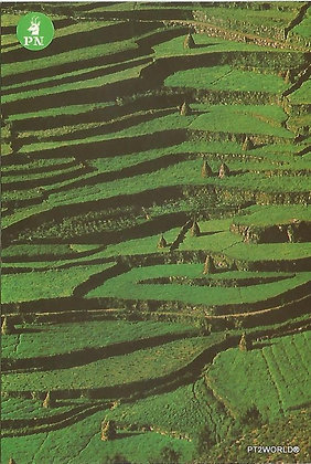 Portugal PTBR1345 Braga Gerês Parque Nacional da Peneda