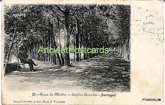 Portugal Ago PTLE0151910 Leiria Caldas da Rainha 1910