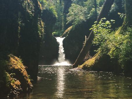 Hiking the Gorge: Punchbowl Falls