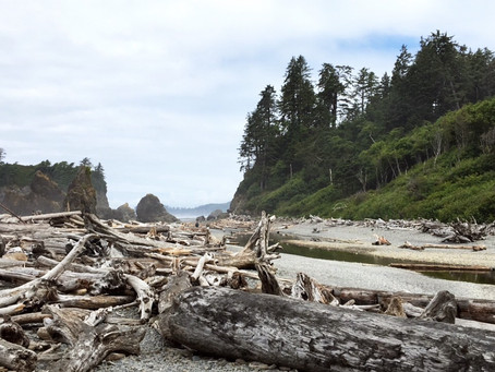 My Best Friend Came from Iowa: Olympic National Park