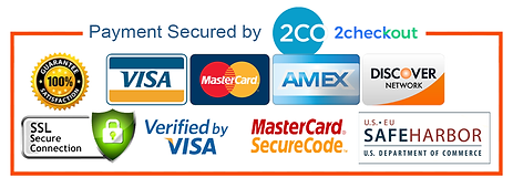 secure payment white.png