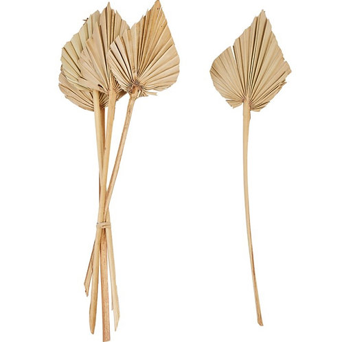 "21""H Dried Natural Palm Bunch, Spear Cut (Contains 6 Pieces)"