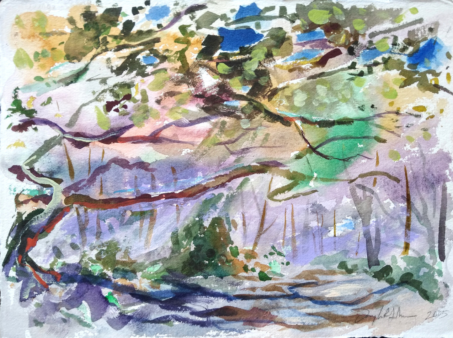 Sunken Forest, Fire Island