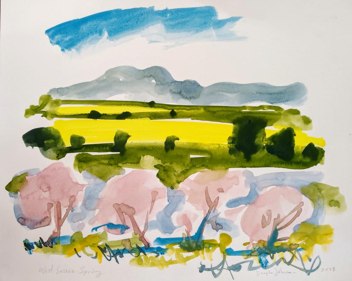 Rapeseed Fields, West Sussex
