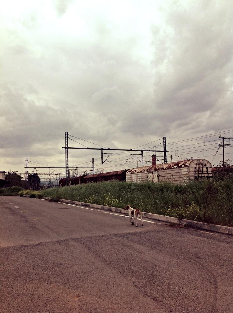 ΣΟΦΙΑ ΔΡΑΓΑΝΟΥΔΗ_6