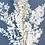 Thumbnail: Ruscus preservado