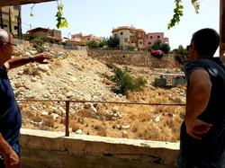 ייעוץ בנושא שפני סלע בג'וליס