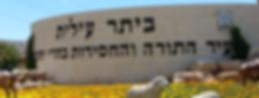 ביתר עילית - עיר התורה וחסידות בהרי יהודה