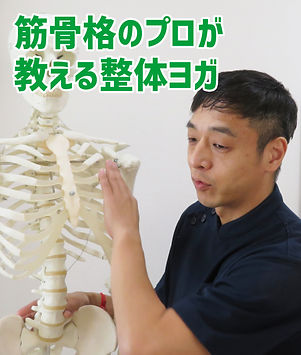 筋骨格のプロ.jpg