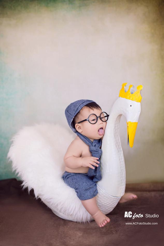 布里斯班黄金海岸华人新生儿满月照百日照摄影工作室100天宝宝婴儿儿童摄影
