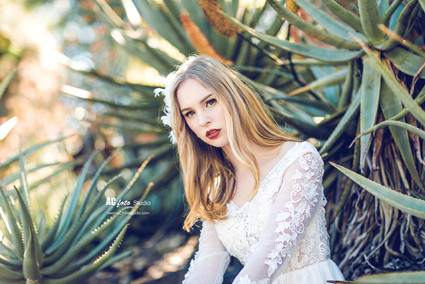布里斯班黄金海岸个人写真婚纱摄影百日照摄影工作室