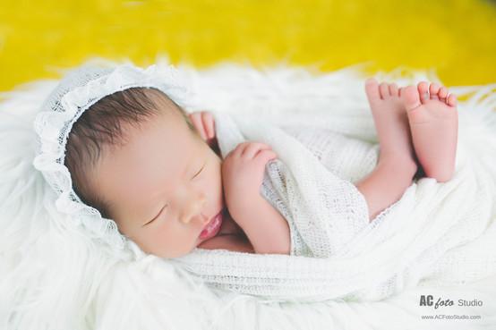 布里斯班黄金海岸新生儿满月照百日照摄影工作室Brisbane Gold Coast newborn baby photos photography studio