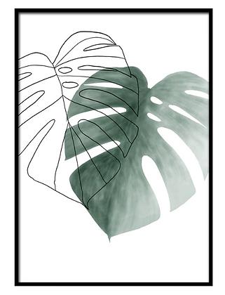 Leaves Shadow Print