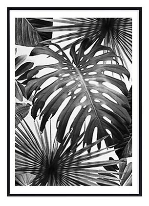 B&W Tropical Leaves Print