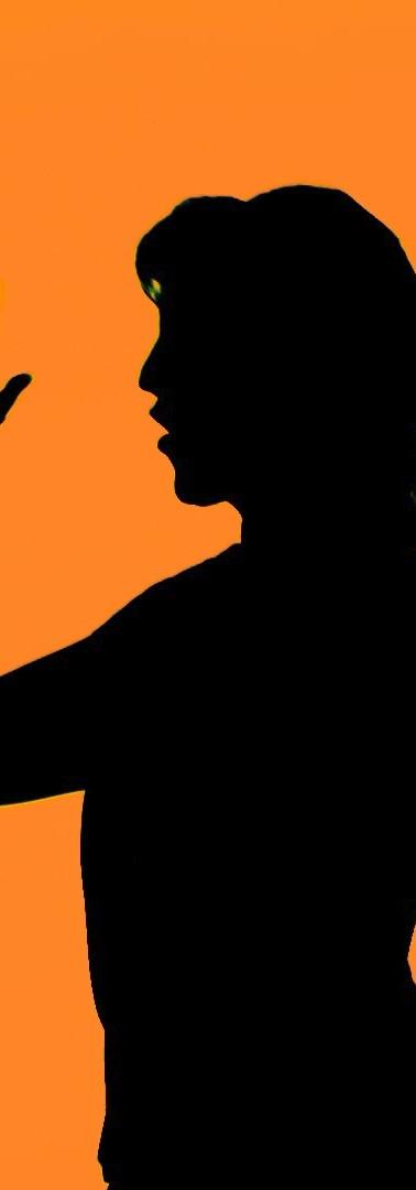 Pic1_Orange.jpg