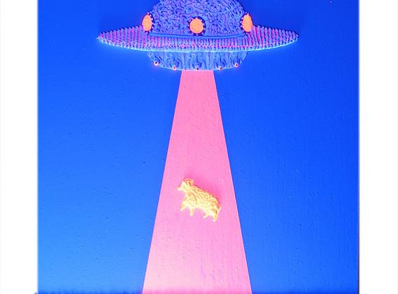 Flying-sheep-UV.jpg