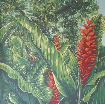 Végétation antillaise 4