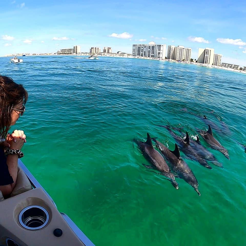 Dolphin/Sunset/Fireworks (Thursday only)