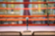 Raposo Fitness Boxing Ring Announcer.jpg