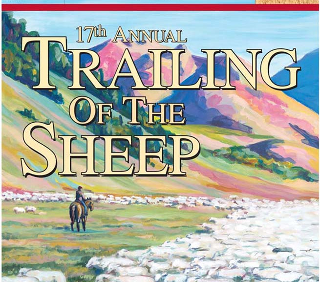 Trailing of the Sheep 2013
