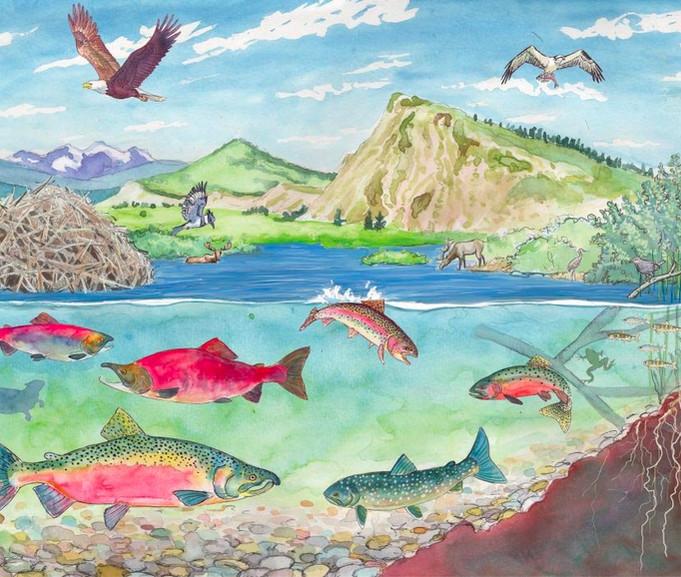 Stanley Wetlands - illustration 2018