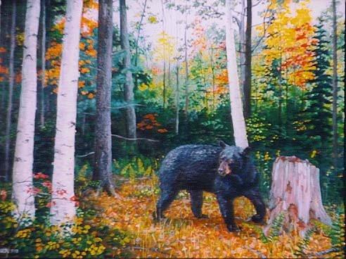bear in woods 1998.jpg