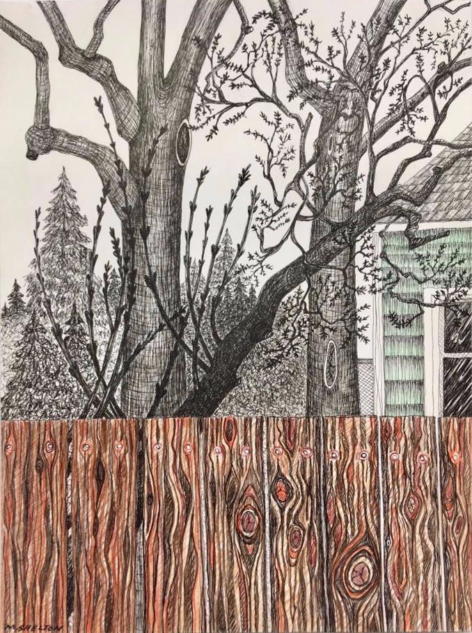 Backyard View / Winter