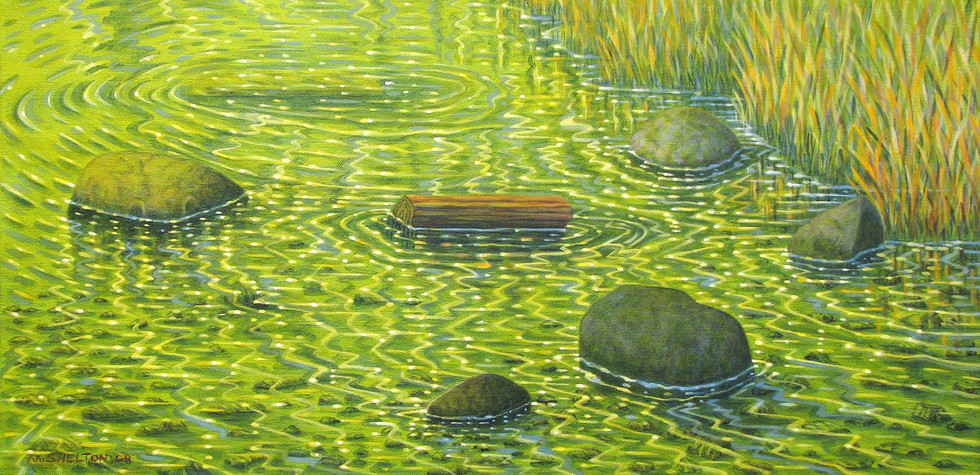 Roslyn Lake / Shallow Shoreline