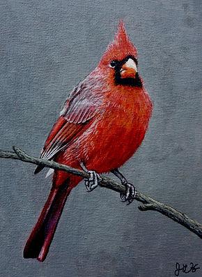 cardinalNEWNEW_edited.jpg