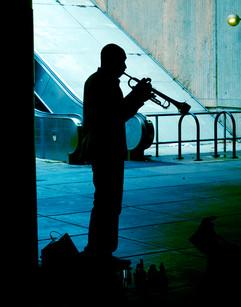 Trumpeter .jpg