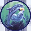 Dolphin Plumbing Logo