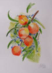 Anna Wode, painting, peinture, Bild, pêches, mixte line