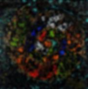 Anna Wode, peinture, painting, cuoquillage murano