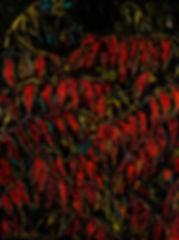 Automne rouge.jpg