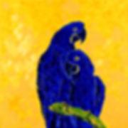 Perroquets 2.jpg