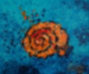 Coquillage, shell, mer, sea, Anna Wode