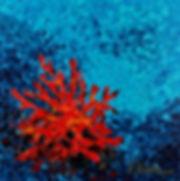 coral, corail, sea, mer, Anna Wode