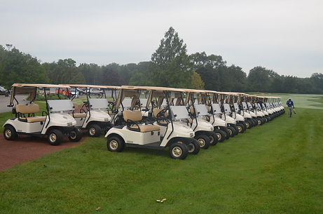 two rows of golf carts on the golf course